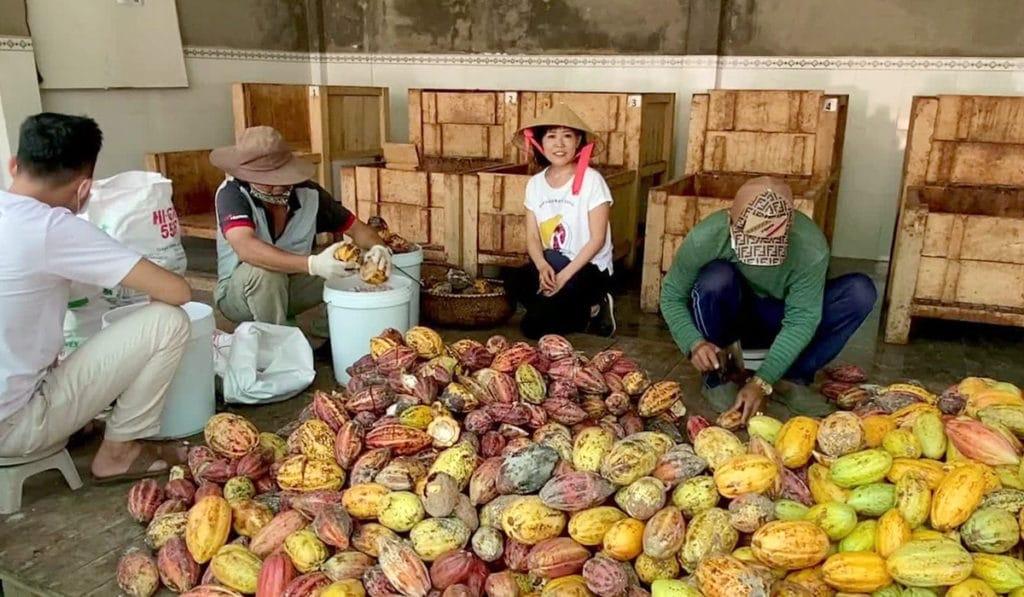 ベトナムのトロピカルフルーツ