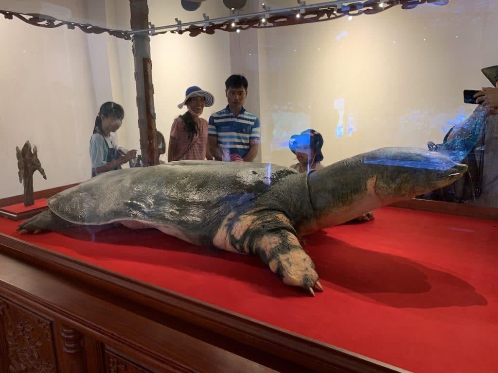 ホアンキエム湖の伝説と生きていた巨大亀